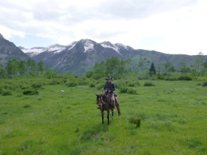 Riding with Zana - If you don't think you get a good workout horseback, you haven't been up Raspberry!